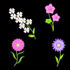 Flower icons set. Chamomile, tulip, petunia. Floral symbols with leaves. Yellow, lilac, pink, orange, green colored plants on black. Vector