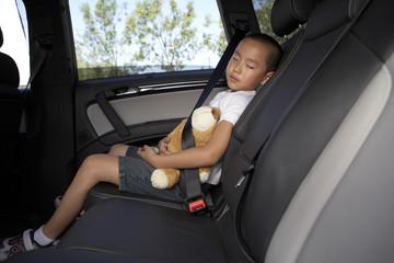 Boy sleeping in car with toy