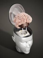 Brain with electricity plug connected to the human head