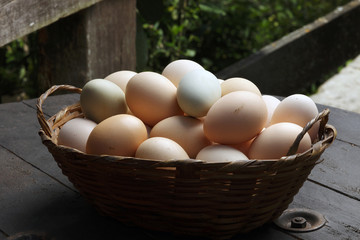 Fresh egg farm on a basket