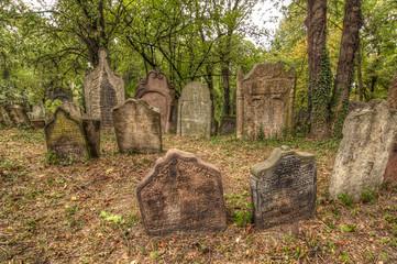 Old Jewish Cemetery at Kolin city, Czech republic