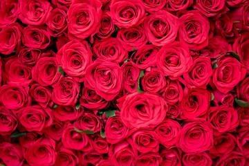 いっぱいの薔薇