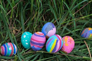 Spoed Fotobehang Tulp Easter eggs in Green Grass. Selective focus.