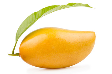 Delicious ripe mango with green leaf on white background.