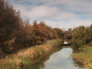 Kharkiv river near the bridge in the autumn.