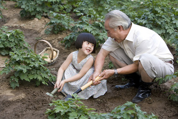 Happy granddaughter gardening with grandfather