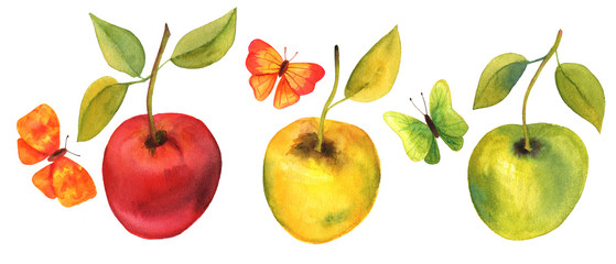 Set of watercolor drawings of apples and butterflies