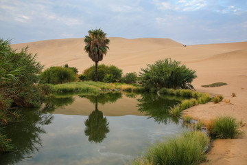 Oasis of Huacachina, Ica region, Peru.