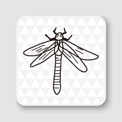 Dragonfly doodle