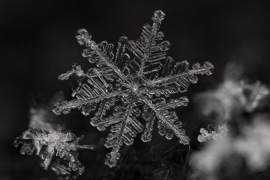 Extreme magnification - Real snowflake