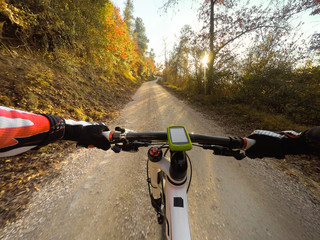Riding in the forest at sunset  Man on mountain bike. POV Original Point of View