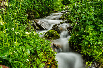 Long Exposure of Creek in Colorado Mountains
