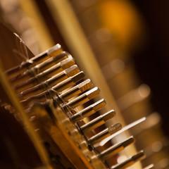 Detail of harp closeup