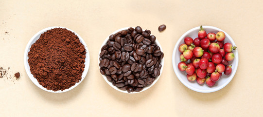 Red coffee beans berries, roasted coffee and coffee powder on beige paper background.