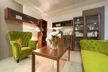 Interior of a living room with a green armchairm