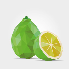 Polygonal Lime in Vector