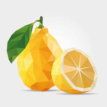 Polygonal Lemon in Vector