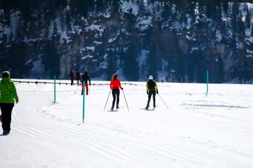 Cross Country Ski Tracks in Engadin