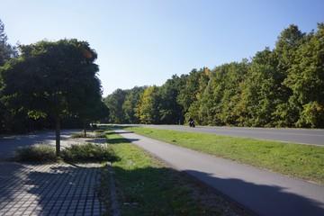 Motorrad auf einr Straße im Wald mit einem Parkplatz