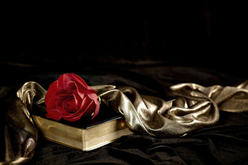 Red Rose with Gold Satin