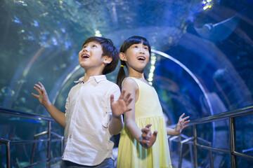 Children in aquarium