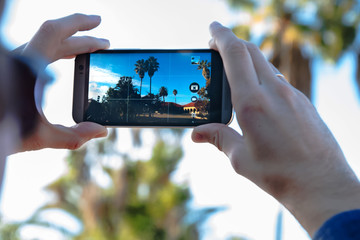 Taking a picture of landscape with palms