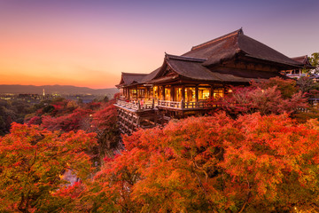 Fototapete - Kiyomizu-dera Temple in Japan