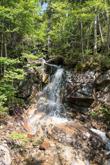 Waterfall in Mount Lafayette, New Hampshire, USA