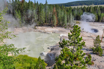Fototapete - One of the many scenic landscapes of Yellowstone National Park,