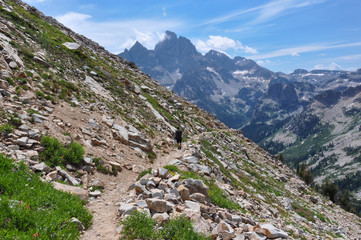 Fototapete - Paintbrush Canyon Trail in Grand Tetons National Park, Wyoming,