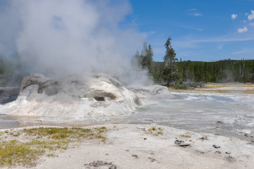 Fototapete - Active Geysers in Yellowstone National Park, Wyoming, USA