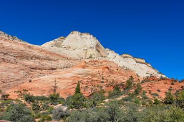 Wall Mural - Zion National Park, Utah, USA