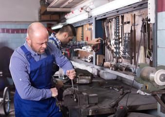 Professional mechanics in repair shop