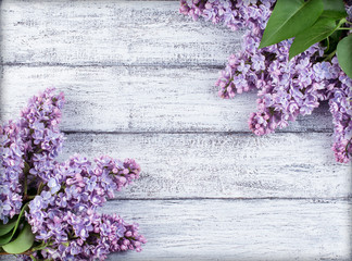 Acrylic Prints Lilac Lilac flowers on wooden planks