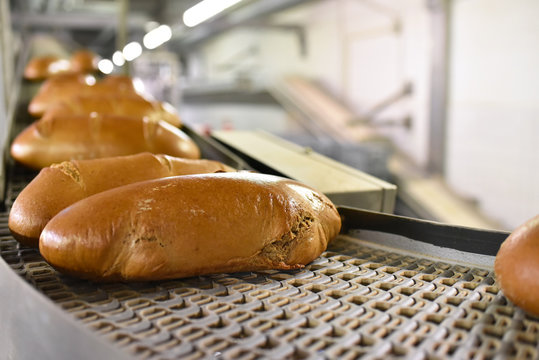 Fliessband mit Broten in einer Fabrik // Conveyor with breads in a factory - Shipping in the wholesale bakery