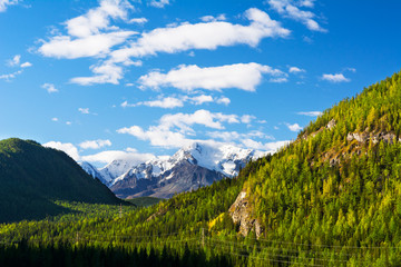 Summer mountains view snow-capped peaks green forest and blue sky landscape, Altay mountains, Siberia, Russia