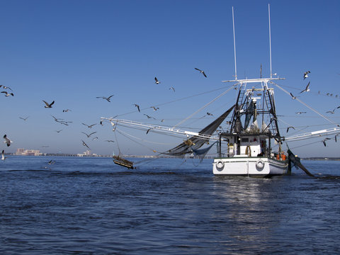 Shrimp Boat along Gulf Coast