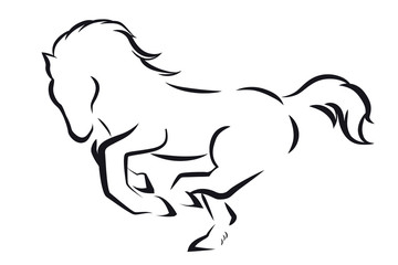 Minimalistic design with outline prancing horse on a white background.