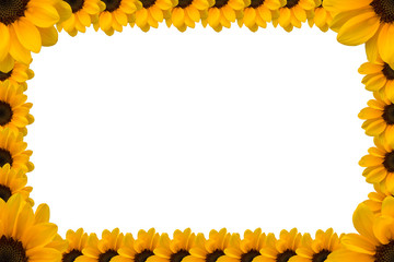 Sunflower Presentation Template with White Background