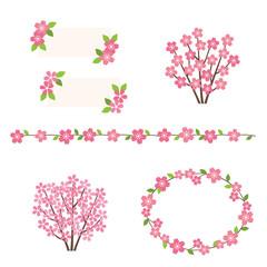 Set of cherry blossoms