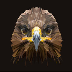 Eagle low poly design. Triangle vector illustration.