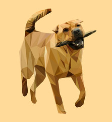 Chinese dog Shar-Pei low poly design. Triangle vector illustration.
