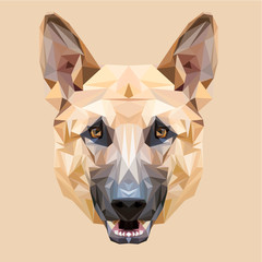Dog German shepherd low poly design. Triangle vector illustration.