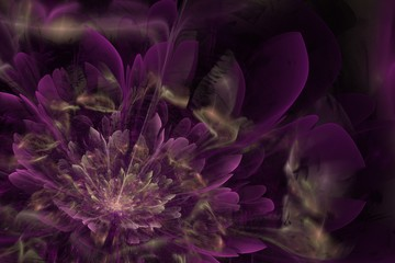 Violet fractal flower on dark background