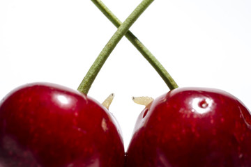 two worms in cherries on white background