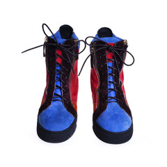 Stylish female boots