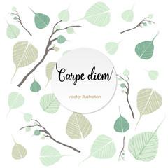 "Carpe diem. Latin aphorism ""Seize the day"". Vector organic style"