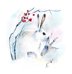 White hare. Winter composition. Watercolor hand drawn illustration