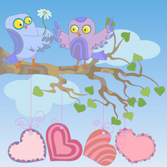 Love owls sit on a tree branch on blue sky background.