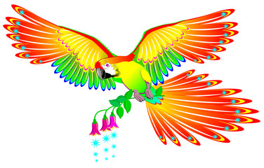 Illustration of fairyland fantasy parrot, vector cartoon image.